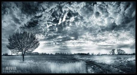 Heaven help by werol
