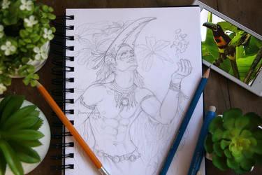 Pencil Drawing + Photo of Aracari by barananduen