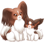MY PAPILLONS!! by 216th