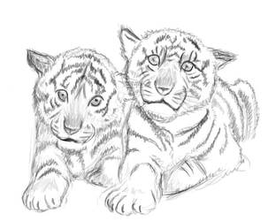 Tiger Cubs by LGrubbs