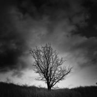-Last Deductor- by Janek-Sedlar