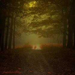 -Alchymistas secret path- by Janek-Sedlar