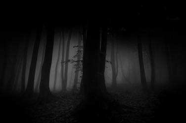 -Light without dark doesnt exist- by Janek-Sedlar