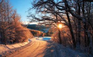 -Morning road to village- by Janek-Sedlar
