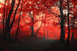 -Lover_s world- by Janek-Sedlar