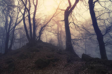 -Abandoned hill of silence- by Janek-Sedlar
