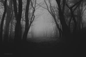 -Path into a Raven den- by Janek-Sedlar