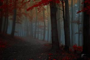 -Medieval memories- by Janek-Sedlar