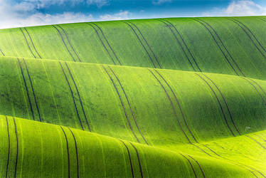-Possitive waves- by Janek-Sedlar