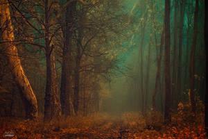 -Emerald vision- by Janek-Sedlar