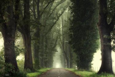 Tunnel of inner calmness by Janek-Sedlar