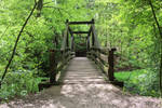 bridge by netbandit