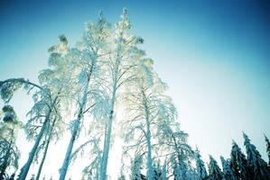 winter in Finland by Andezigi