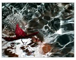 -last dance- by fangedfem