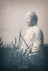 buddha. by Mr-Heli