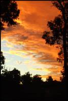 Burnt Sky by berryllium