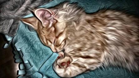 Painted Sleep by WisdomX