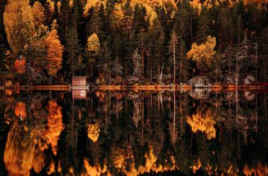 Autumn by ajonsaas