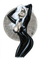Black Cat Bw706 by AlexMirandaArt