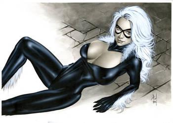 Black Cat Bw717 by AlexMirandaArt