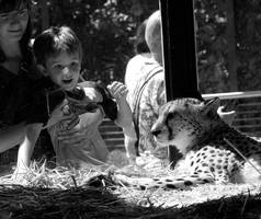 The cheetah and the boy by another-marble