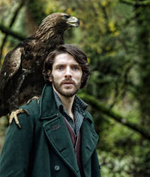 Merlin and the Once and Future (Feathered) King by Prue84