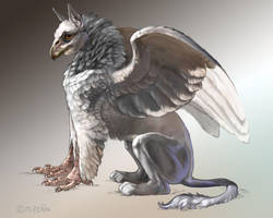 Grey Griffin with Pink Feet by Reptangle