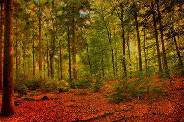 Autumn Fortest II by LotusOnlineDe