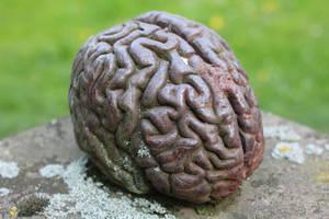 Brain I by LotusOnlineDe