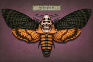 Papilio feralis by theartofTenia