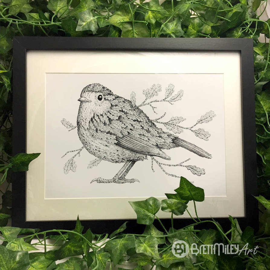 Leaf Robin - Animal and Bird Ink Collection by BMiley