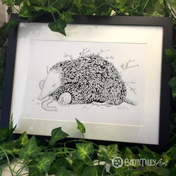 Leaf Mole - Animal and Bird Ink Collection by BMiley