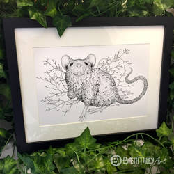 Leaf Mouse - Animal and Bird Ink Collection by BMiley