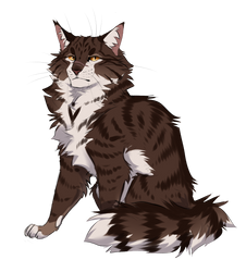 Tigerstar by Cat-With-Horns