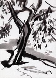 Cui Hu Mu, Tree at Green Lake by unshakentomato