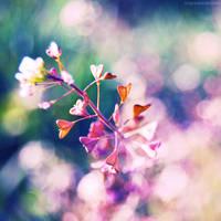I heart nature. by magnesina