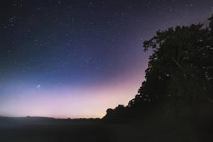 Light of tomorrow by MGawronski