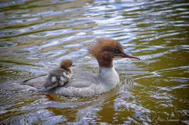 Mothership (II). by Phototubby