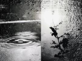 Raintime (II). by Phototubby