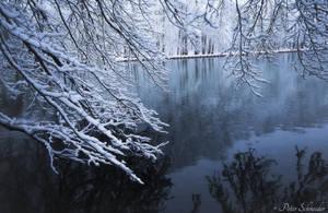 Short winter tales (II). by Phototubby