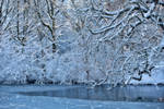 Winter walk. by Phototubby