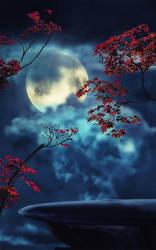 Night Glory by ahcsourav