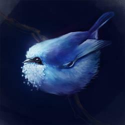 Bird by Shimery
