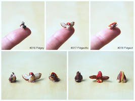 Pinkymon: Pidgey, Pidgeotto, Pidgeot by lonelysouthpaw