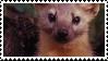 pine marten stamp by fogzilla