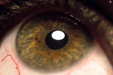 Eye by WildSteva