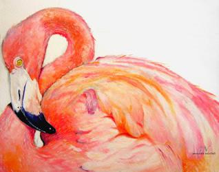 oil Flamingo Andean Flamenco andino by chinchillacosmica