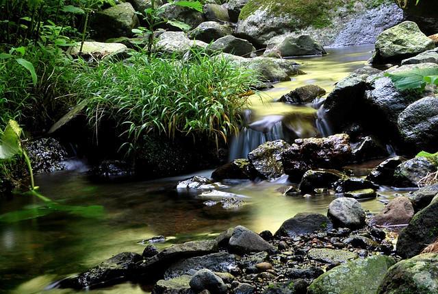 Let it flow by bakulrujak