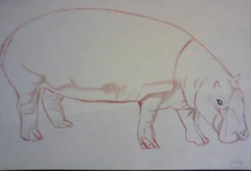Hippo by SadisticSharky