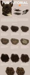 Patreon - Fur Tutorial by Simkaye